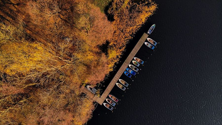 Fall vibes in Mecklenburg, Germany From Above  Aerial View Aerial Dronephotography Drone  Fall Colors Fall Autumn colors Autumn Boats No People Built Structure Beauty In Nature