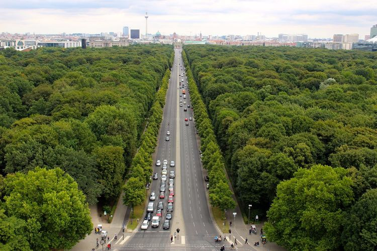 High Angle View Of Road Amidst The Tiergarten Against Fernsehturm