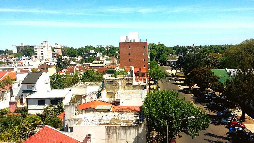RosarioCity Verano Arboles Parque  Independencia Chilling