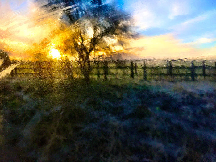 This shot was taken from a train going through the British countryside at sunrise. I moved my camera up, behind some condensation on the window, for the shot. Countryside Countryside Uk Countryside Views England Fence Fences & Beyond Sunrise Sunrise And Clouds Sunrise Silhouette Sunrise_sunsets_aroundworld Trees