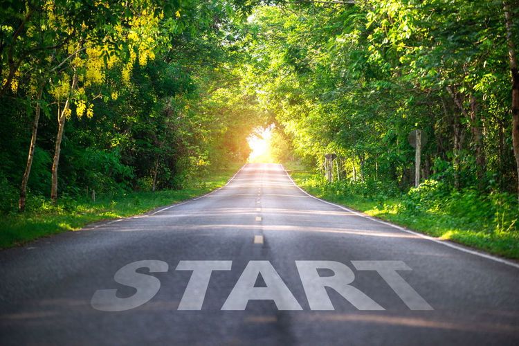 Sign Road Transportation Tree Plant Direction The Way Forward Symbol Marking Nature Road Marking Communication Diminishing Perspective Guidance Sunlight Day Growth No People Outdoors Text Lens Flare
