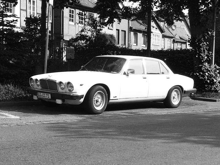 JAGUAR Oldtimes Classic Car Monochrome