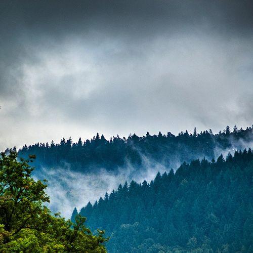 Herbst im Schwarzwald Schwarzwald Bad Herrenalb Herbst Autumn Clouds