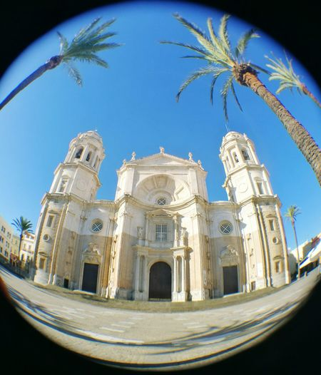 🌴🌴Architecture Building Exterior Palm Tree Tourism Spanish Culture History Cathedral Cádiz, Spain Fish-eye Lens Religion Built Structure Low Angle View Holidays ☀ Summer Mj HuaweiP9 Huaweiphotography Huawei EyeEm Beautiful Photo Photography Lovephotography  LoveMyPhoneCamera