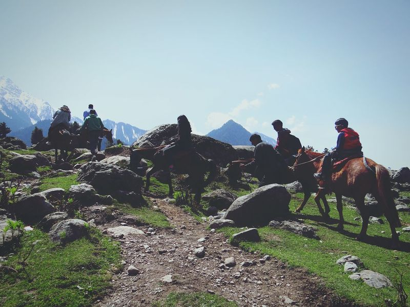 Feel The Journey Kashmirdiaries Valley Best Trip Horse Riding Pahalgam