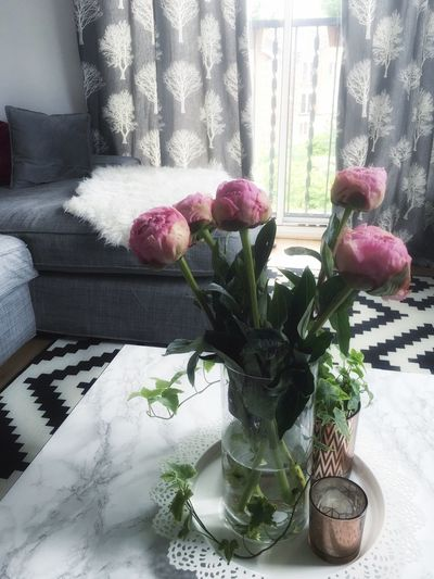 .::Home sweet home::. Indoors  Flower Window Table Fragility Vase Curtain Close-up Plant Transparent Glass - Material Freshness Flower Head Balcony Rose - Flower Bouquet Flower Arrangement Petal Growth Bunch Of Flowers Peony  Peony Flower Peony Bud Marble