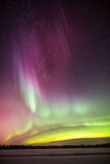 Sky full of arctic colors Beauty In Nature Night Sky Star - Space Environment Tranquil Scene Astronomy Tranquility Landscape No People Nature Natural Phenomenon Green Color Purple Outdoors Northern Lights Aurora Polaris Yellow Red Winter Field Snow Freshness Photography Hello World