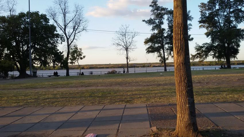 Sunset Park Trees River View Eyeemnature People Afternoon
