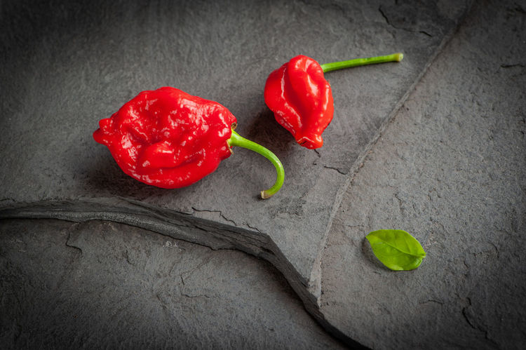 Carolina Reaper Chili Pepper Close-up Food Food And Drink Freshness Fruit Garnish Green Color Healthy Eating High Angle View Indoors  Leaf No People Pepper Plant Plant Part Red Red Chili Pepper Still Life Vegetable Wellbeing