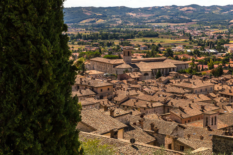 A cityscape of medieval houses of Gubbio Italy Ancient Ancient Civilization Architecture Building Building Exterior Built Structure City Day High Angle View History House Mountain Nature No People Old Outdoors Plant Residential District Sunlight The Past TOWNSCAPE Tree