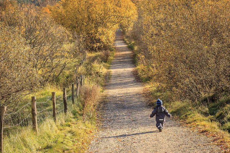 Autumn Beauty In Nature Child Childhood Day Field Footpath Full Length Future Grass Nature One Person Orange Color Outdoors People Real People Rear View Rural Scene The Way Forward Tree Walk Of Life Walking