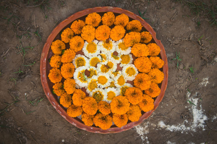 High angle view of orange rose in market