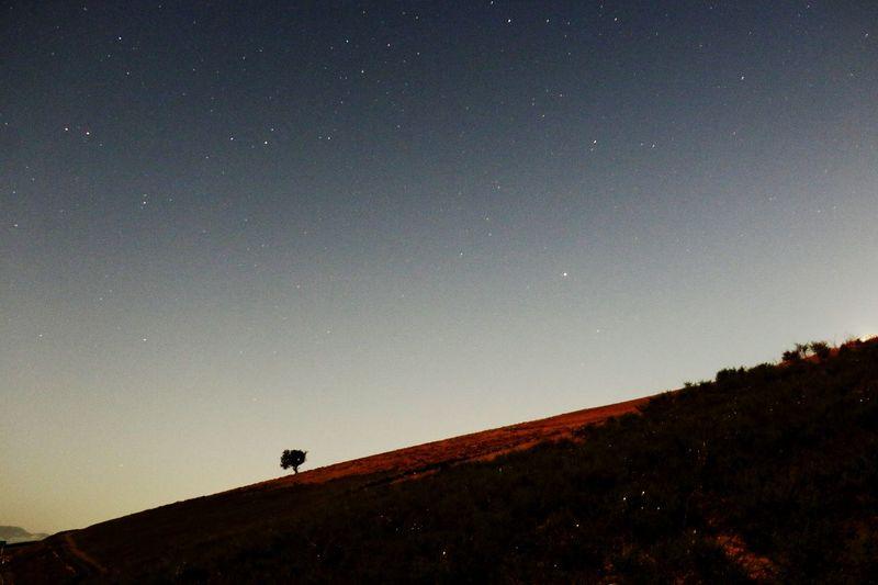 Star - Space Astronomy Nature Night Sky Beauty In Nature Outdoors Star ستاره اسمان شب ایران Iran طبیعت ایران طبیعت