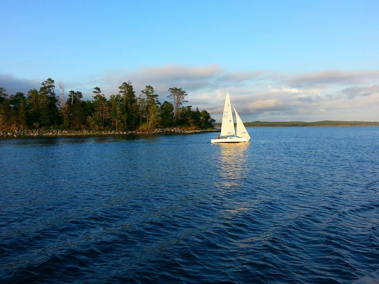 Passing a lovely sailboat. Taking Photos Relaxing Enjoying Life Serenity Halifax On A Boat My City Harbour Cruise Going Sailing Blue Wave