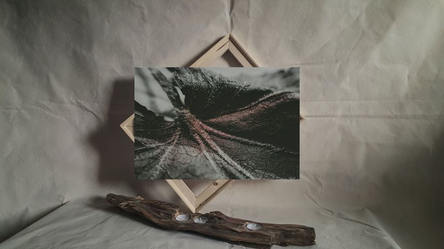 'intravenous' http://etsy.me/2m7gntY Darkness And Beauty Dark Photography Darkart Darkness And Light ArtWork Art And Craft Art Photography For Sale Art Gallery Etsyseller Gallery_of_all
