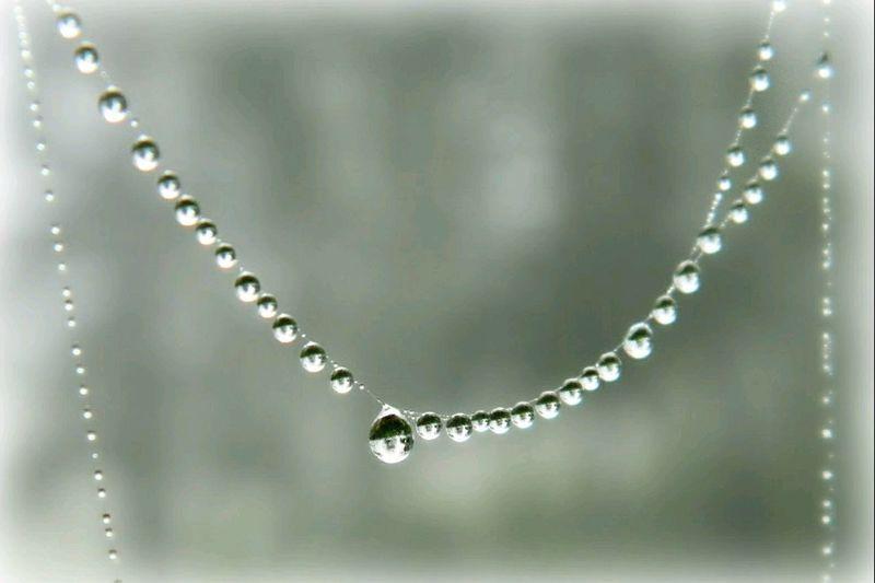 Drops Natural Beauty