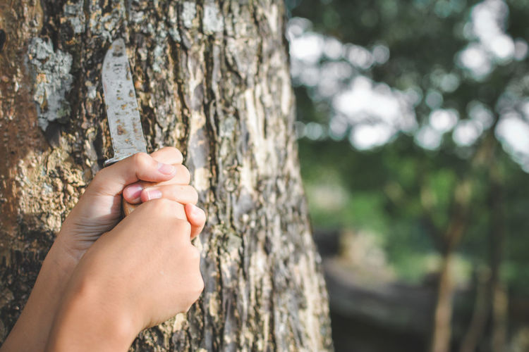 Cropped hands holding knife by tree trunk