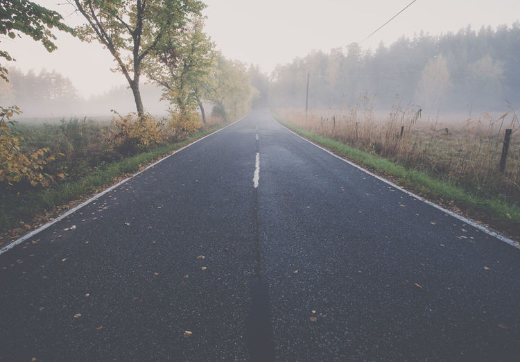Empty road during foggy weather