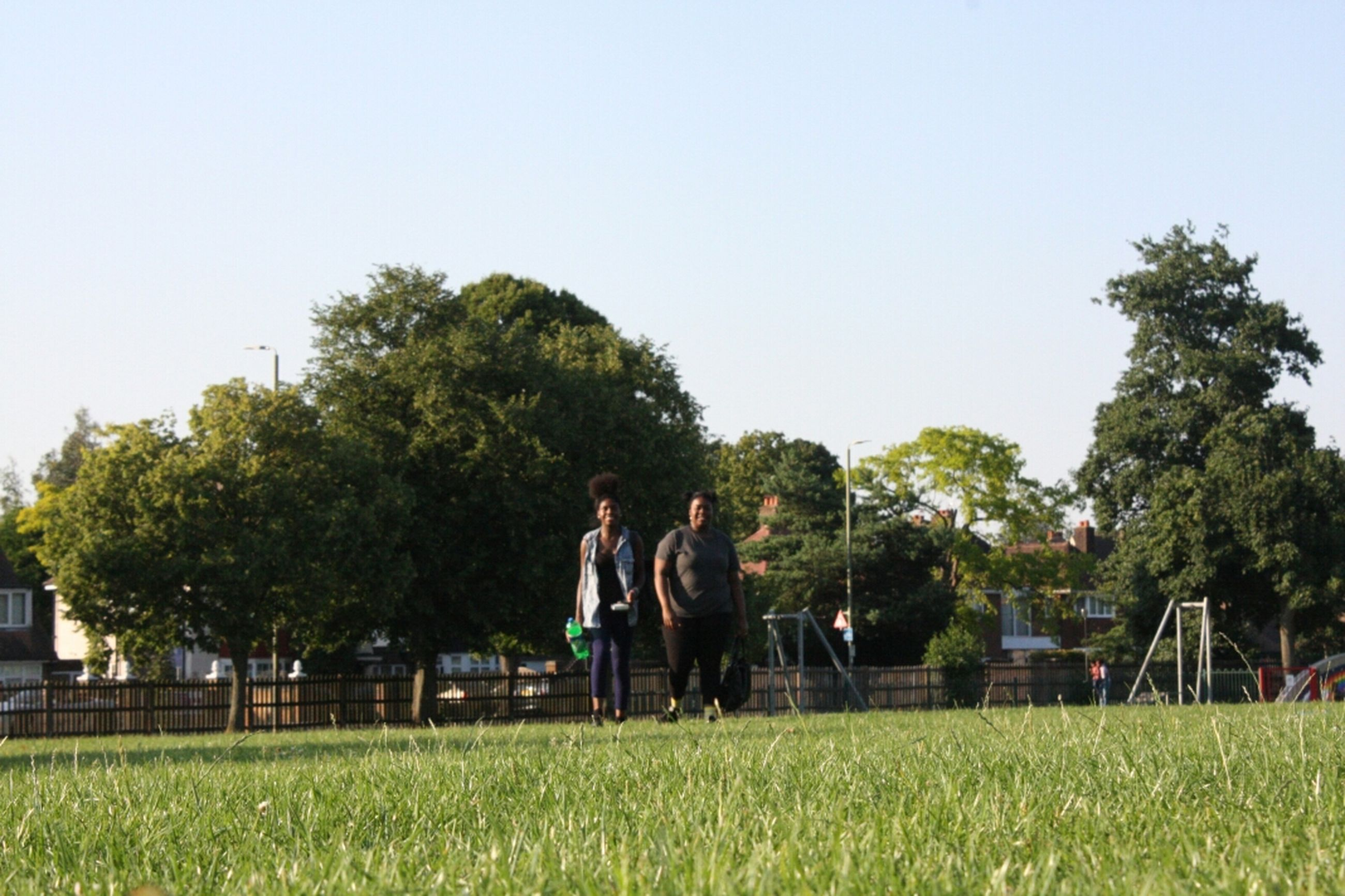 clear sky, grass, tree, men, lifestyles, leisure activity, copy space, field, person, togetherness, green color, growth, rear view, bonding, nature, full length, landscape, walking