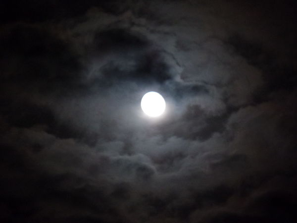 Ocala Florida Eye4photography  Nightphotography Nature MyPics Mooonlight Moonshot Awesomeshot Naturelovers Awesome CarmenVazquezPhotography Checkthis Out Moon And Clouds Naturephotography Moonlight Moonphotography