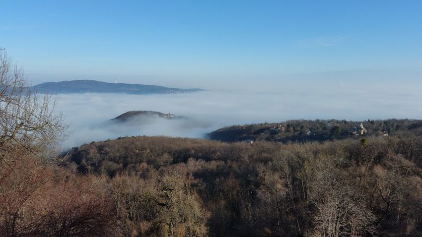 Fog Fog Over The City Nature Nature Beauty Blue Sky