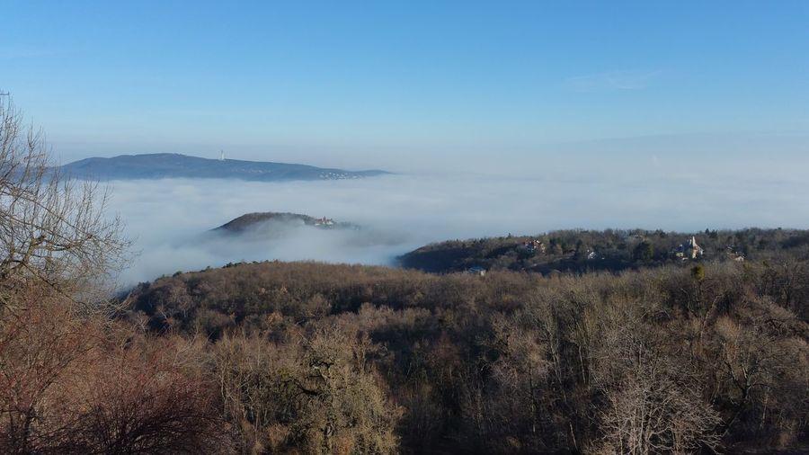 Fog Fog Over The City Nature Nature Beauty Blue Sky