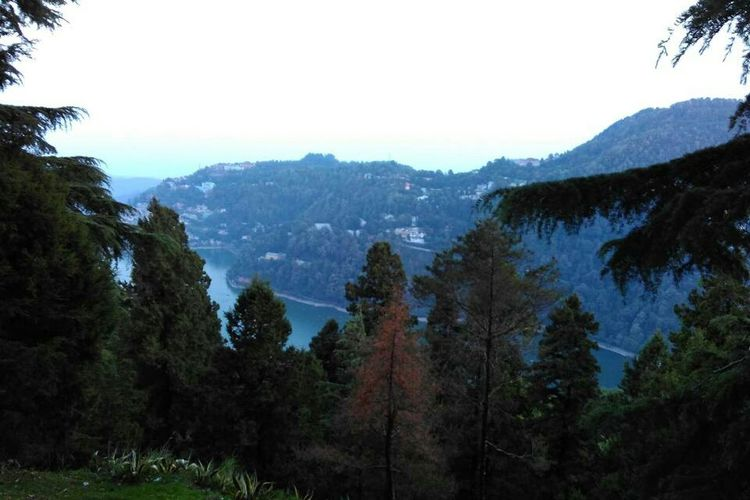 View of Naini Lake in place is so beautiful..I love this pic a lot because of lots of memories here and fun we had and watching such a beautiful scene from the top was an amazing experience!! Nature Beauty In Nature Plants Photography Nature Photography Nature_collection EyeEm Best Shots Nature Is Art Naturelovers EyeEm Nature Lover Leaf 🍂 Flower Trees Lake Nainital Lake Lakes  Water Rops Side View Scene Lake View Tree Mountain Forest Pinaceae Pine Tree Sky Mountain Range Landscape My Best Travel Photo