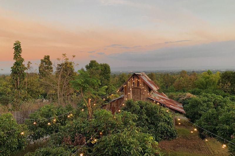 Sunset Thailand Chiangmai Phufinn Chiangmai PhonePhotography Plant Sky Architecture Nature Beauty In Nature No People Tree