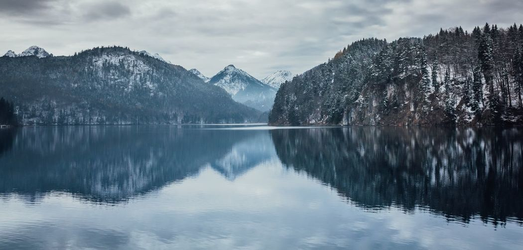 Hohenschwangau lake with bavarian Alps in the background, winter time, beautiful reflection Scenics - Nature Reflection Mountain Water Beauty In Nature Lake Sky Tranquility Tranquil Scene Cloud - Sky Waterfront Mountain Range Cold Temperature Nature Snow No People Idyllic Tree Outdoors Snowcapped Mountain Reflection Lake Forest Alps Pine Woodland Horizon Over Water My Best Photo