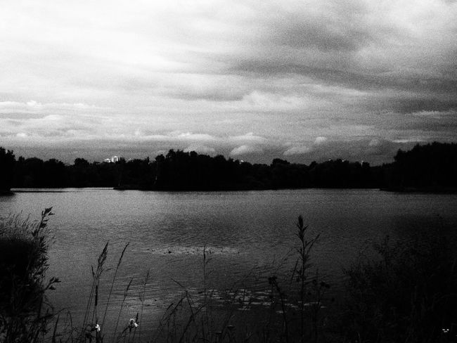Nature Sky Old Black And White The Week On EyeEm
