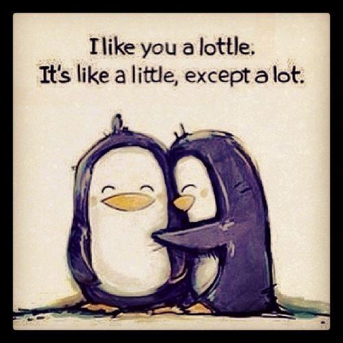 I love Penguins Pengies Hugs Huggles Lottle Alot Penguinhugs Warm Cute