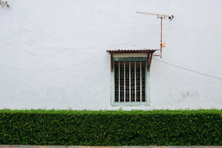 House on green wall of building