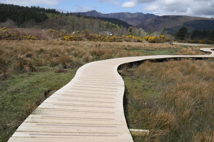 Boardwalk amidst field against mountain