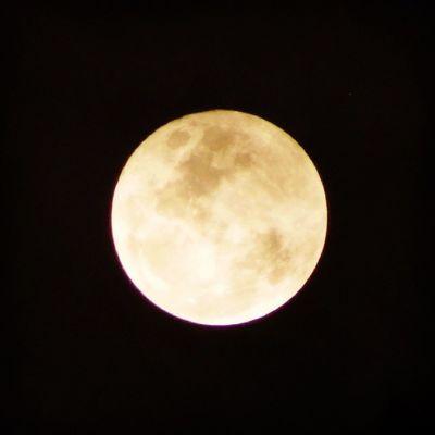 Lua, oh lua, manda meu beijo pra ela... ?