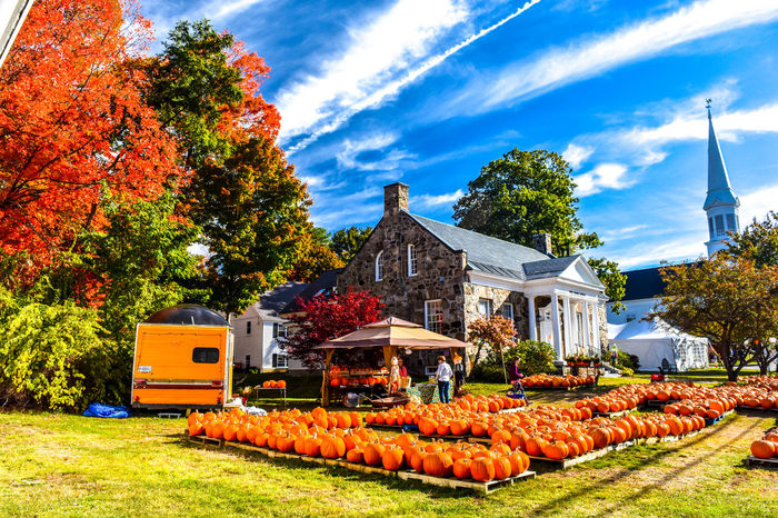 Fall, pumpkins and a beautiful sky in New England. York, Maine Church New England  Orange PumpkinPatch🎃 Pumpkins Architecture Autumn Building Exterior Change Cloud - Sky Day Field Leaves 🍁 Nature New England Church Orange Color Outdoors Pumpkin Sky Sunlight Tree