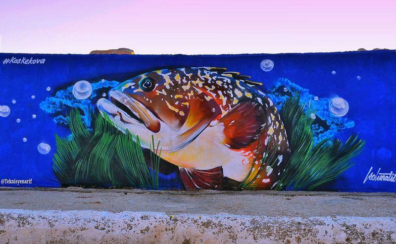 Orfoz balığını avlanması dikkat çekmek için resmi çizildi
