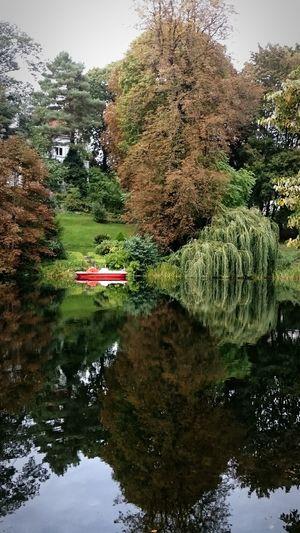 Und Da Ist Er Wieder ... Der Herbst Wasserspiegelung My Smartphone Life Reflections Water Reflections