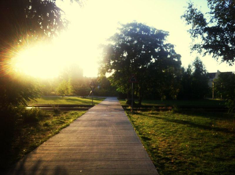 Went For A Run  Enjoying Silence & Sun