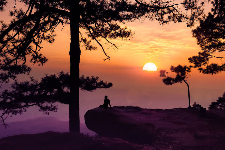 phalomsak view point Sunset Sky Tree Beauty In Nature Silhouette Orange Color Scenics - Nature Plant Sun Tranquility Tranquil Scene Nature Water Real People Idyllic Non-urban Scene Outdoors One Person Standing