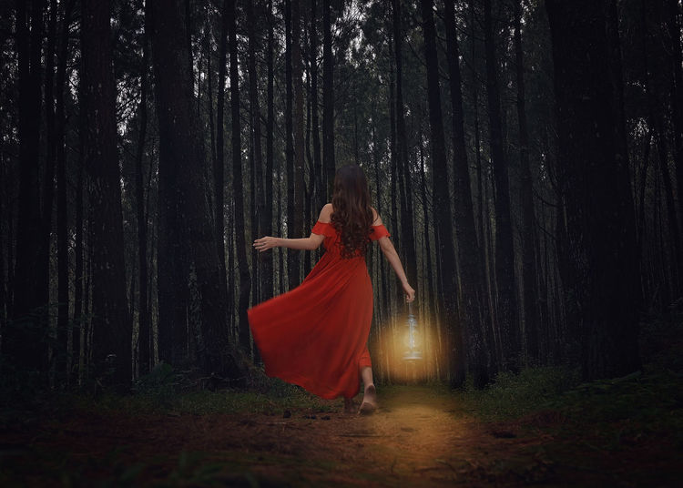 A Light unto my