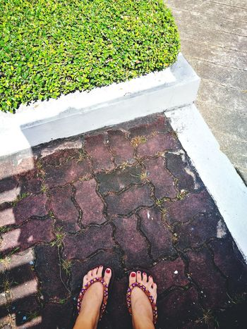 Lonely Alone Time Go Around Low Section Human Foot Human Body Part High Angle View One Person Day Standing Outdoors EyeEm Ready   EyeEmNewHere