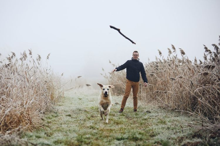 Dog chasing stick thrown by man on field