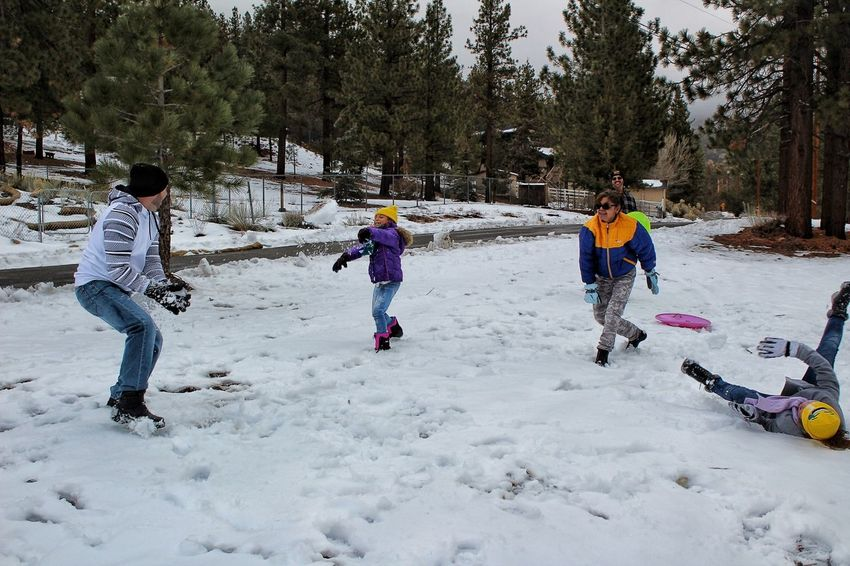 Snowball fights Family Winter Snow Cold Temperature Full Length Warm Clothing Childhood Fun Leisure Activity Outdoors Togetherness People Happiness Day Tree Friendship Nature Snow Snowball Fight Having Fun Action Shot  Winter Big Bear Lake In The Snow Vacation