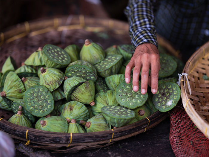 Close-Up Of Man Selling Lotus Pods