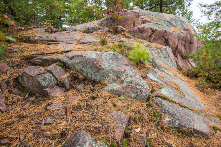 Rock formations in sunlight