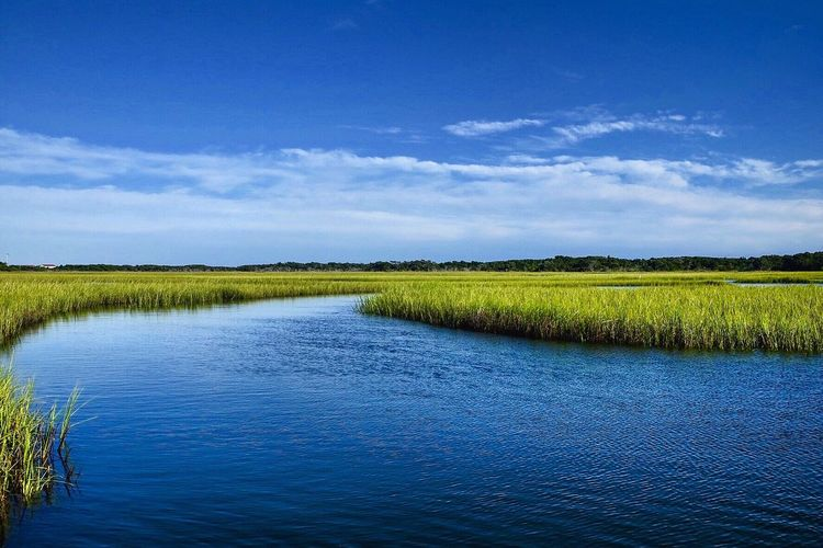 The Cut Through Atlantic Beach NC Estuary Marsh Coastal Coastal Life Atlantic Beach NC Sea Scenics - Nature Sky Tranquility Tranquil Scene Beauty In Nature Water Cloud - Sky Nature Landscape Environment Blue Outdoors The Great Outdoors - 2018 EyeEm Awards