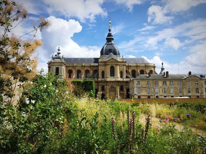 Cathédrale de Versailles, vue du Potager du Roi
