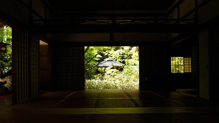 Takumar 28mm F3.5 Nex5 Indoors  Architecture Day