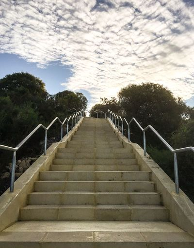 Fitness Challenge Outdoor Photography Flora Evening Diminishing Perspective Lifestyle Workout Manning Park Western Australia Healthy Lifestyle Australia Exercise Alternative Fitness Trees Outdoors Challenge Steps Stairs (null)Fitness Nature Steep