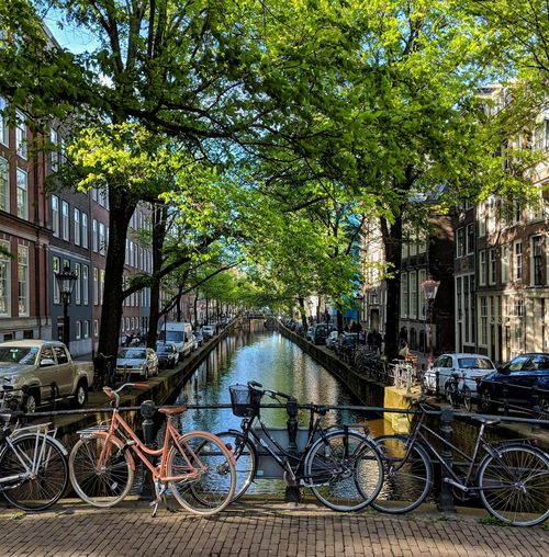 Bikes over the canal Bridges Bridgeview Cityscape cityscapes Bridge Bikes Canals Canalstreet Iamsterdam Bestofamsterdam Amsterdamworld Amsterdam Canal Street Tree Bicycle Rack Stationary Bicycle City Land Vehicle Sky Architecture Building Exterior Built Structure